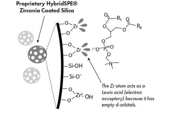 HybridSPE sorbent for dispersive pipette XTRaction
