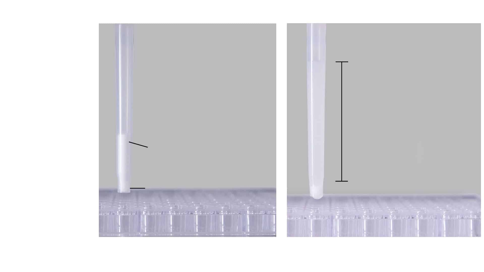 INTip size exclusion chromatography